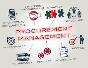 consulenza procurement management
