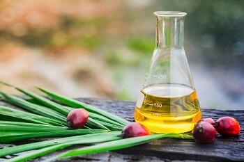 Consulenza certificazione olio di palma sostenibile RSPO